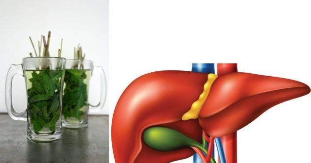 Karaciğeri 1 gecede tertemiz yapıyor Karaciğeriniz siz farkında olmasanız da vücudunuzu temizleyen en önemli organlardandır. Eğer fazla yağlı yemekler tüketiyorsanız ve ayrıca alkol kullanıyorsanız, karaciğerinizi zorluyorsunuz demektir. Düzenli temizlenmediğinde karaciğer fonksiyonlarında düşüş olabilir ve bu olduğunda sağlığınızı ciddi anlamda kaybedebilirsiniz. Size bahsetmek üzere olduğumuz içecekleri düzenli olarak tükettiğiniz takdirde karaciğeriniz tertemiz, sağlığınız da en üst seviyede olacaktır. Karaciğer temizliği sabah saat 1 ve 3 arasında meydana gelir. Eğer bu saatlerde derin uykuda değilseniz, karaciğerinize iyilik yapmıyorsunuz demektir. Ayrıca zamanında yatmış olsanız bile, eğer akşam yemeğinde fazla yağlı bir şey tükettiyseniz, karaciğerinizi zorlu bir gece bekliyor demektir. Tek yapmanız gereken karaciğerinize fazla yüklenmemeyi öğrenmek. Gerisini kendisi halledecektir