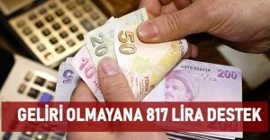 Geliri Olmayana 817 Lira Destek Verilecek