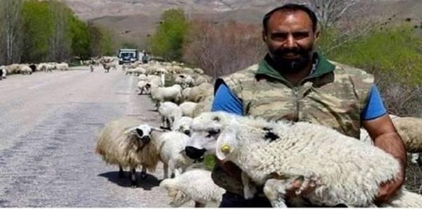 Çoban ve Zengin Adamın Hikayesi.Çobanın biri dere kenarında koyunlarını otlatıyormuş. Tam o anda, yanına bir Jeep yanaşmış. Son derce şık ve pahalı giyimli bir sürücü aşağıya inmiş ve çobana sormuş. – Eğer kaç tane koyunun olduğunu bilirsem bana onlardan bir tanesini verir misin? Çoban bir adama birde koyunlarına bakmış