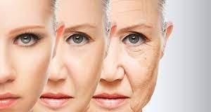 Genç kalmak için bilimsel olarak kanıtlanmış yaşlanma karşıtı 10 besin