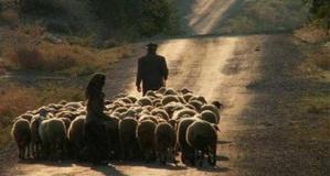 Ağa ile Çoban